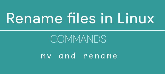 Làm thế nào để đổi tên nhiều file một lúc trên Linux