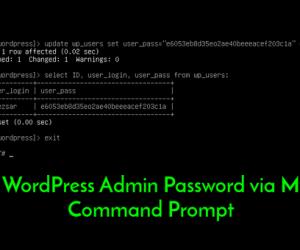 Hướng dẫn cách reset mật khẩu tài khoản quản trị WordPress bằng MySQL Command Prompt