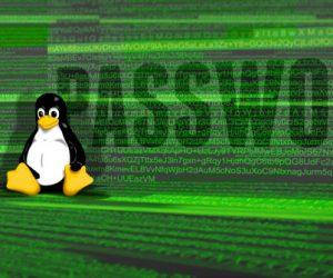 Hướng dẫn thay đổi mật khẩu user trong VPS Linux
