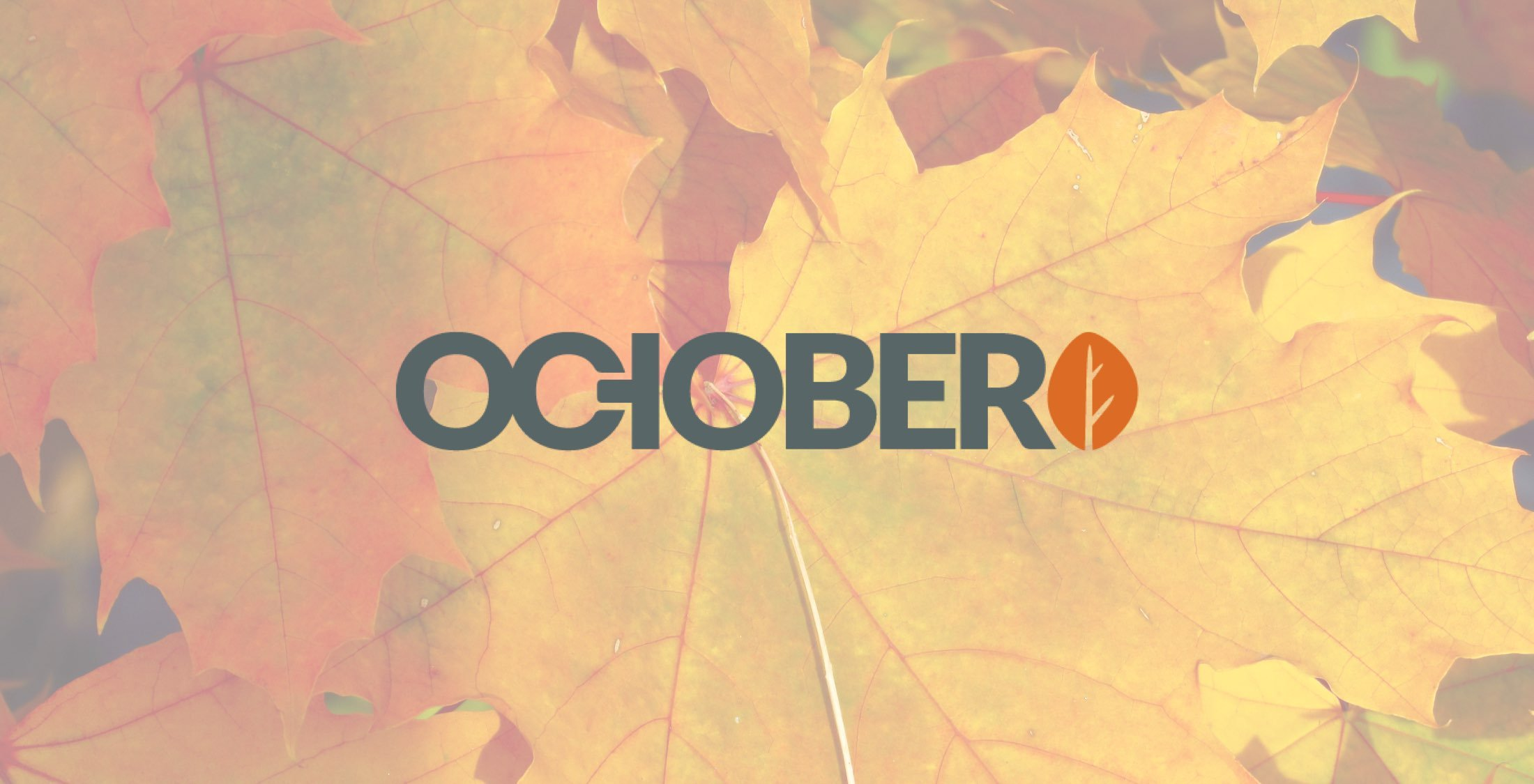 Hướng dẫn cài đặt October CMS trên Debian 9