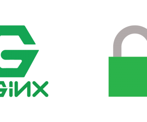 Hướng dẫn một số tip bảo mật Nginx server